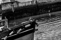Roxy (vedebe) Tags: pêche pêcheur port ports bretagne bateaux noiretblanc netb nb bw monochrome ville city street rue urbain quai travail