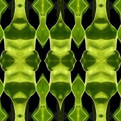 "#green #abstraction • <a style=""font-size:0.8em;"" href=""https://www.flickr.com/photos/61640076@N04/8758493410/"" target=""_blank"">View on Flickr</a>"