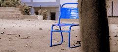 When They Left. (Rimzy Mahil) Tags: life blue love chair nikon peace deep culture simple kandy meaning ilove srilankan noracism dayandnight d3200 onecountry rimzymahilphotography conored
