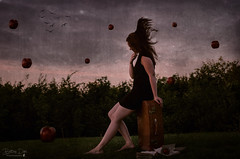 A Strange world (Bettinadam) Tags: sunset wild summer sky inspiration black apple girl strange birds composite photoshop dark hair denmark photography photo skies dress dream levitation apples concept dreamer 2013 brookeshaden bettinadam