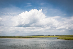 Summer Is Almost Here (Marc_714) Tags: cloud grass clouds swansboro marsh waterway intercoastal marc714