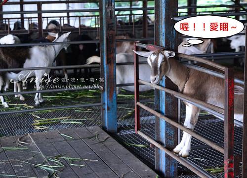 宜農牧場_047.jpg