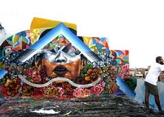 Ever on Bk rooftop (LoisInWonderland) Tags: nyc streetart rooftop brooklyn williamsburg ever muralart