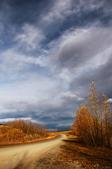 Winding Up (LostMyHeadache: Absolutely Free *) Tags: road autumn trees light sky house fall nature grass leaves weather clouds canon day shadows cloudy earth path atmosphere overcast foliage soil dirt bushes davidsmith calgaryalbertacanada eos60d