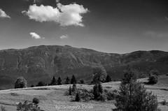 View of Babia Góra (Grzesiek.) Tags: summer mountain poland polska góry beskidżywiecki beskidy lato zawoja babiagóra beskidzywiecki