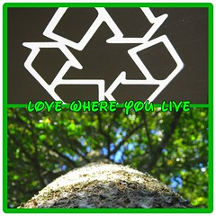 love where you live (DiscoverPhotoz) Tags: life trees green love ecology earth live h2o clean planet recycle breathe mothernature sustain flickrandroidapp:filter=none