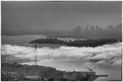 Foggy Day in Vancouver (gordeau) Tags: bw fog vancouver gordon ashby bigmomma unanimous challengeyouwinner thechallengefactory cyunanimous thepinnaclehof gordeau tphofweek231