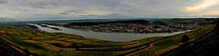 Bingen am Rhein 1 (x_hanni) Tags: panorama river nikon wasser natur fluss rhein bingen totalphoto wowiekazowie d300s