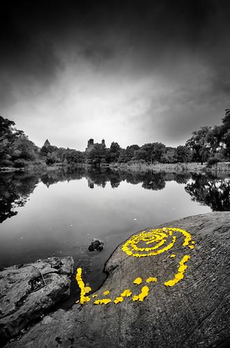 Central Park Swirl