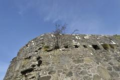 Castlederg 19