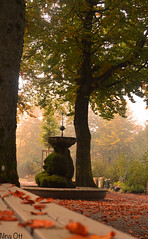 Cementery (_Raggamuffin) Tags: red friedhof rot leaves herbst fallen bltter cementery winterthur herbststimmung