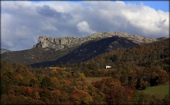 Seronda, Rueu. Becea (Paeda) Tags: asturias otoo asturies cangasdeons seronda becea canguesdons vision:mountain=0956 vision:outdoor=0941 vision:sky=0971 vision:ocean=0656 vision:clouds=0981