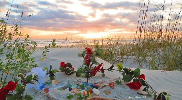 christmas morning, anastasia island