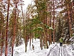 SnowyForestSki (jgagnon63@yahoo.com) Tags: winter snow ski up skiing upperpeninsula snowscape superphoto crosscountryski nordicski paintingeffect deltacounty rapidriver creativefilters rapidriverskitrail