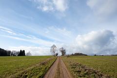 Chemin de campagne (bernard63000) Tags: panorama nature campagne chemin auvergne puydedme combrailles d700 1424mm