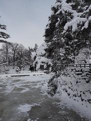 P1120660 (prelude2000) Tags: winter snow castle japan aomori hirosaki moat