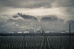 Castelli (Giorgio Meneghetti - Street Photography) Tags: nikon nuvole maggiore tamron castelli montecchio vision:sunset=0666 vision:mountain=0871 vision:outdoor=0833 vision:clouds=099 vision:ocean=0653 vision:sky=0988
