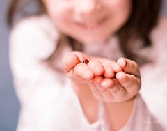 Ladybug (Ivo.Vuk) Tags: blue school red playing game macro cute nature girl beautiful smile up childhood closeup lady bug insect children fun kid spring hands child play hand close post skin outdoor background postcard fingers joy grade vuk card ladybug thumb bodypart playful ivo vukelic