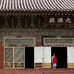 MOINE BHOUDDISTE AU TEMPLE POHYON, COREE DU NORD (Eric Lafforgue Photography) Tags: people color colour architecture square temple person asia faith religion shaved bald belief korea communism tiles foi asie spirituality coree personne couleur humanbeing nationaltreasure communisme northkorea bhuddist traditionalarchitecture dprk chauve carre bhudda rase tuiles bhuddism colorpicture squarepicture democraticpeoplesrepublicofkorea croyance bhuddistmonk spiritualite bhoudda architecturetraditionnelle etrehumain pohyontemple koreanalphabet bhouddisme coreedunord rpdc ryongthong republiquepopulairedemocratiquedecoree ecriturecoreenne koreanwrtting alphabetcoreen imagecaree bhouddiste bhouddha templepohyon tresornational moinebhouddiste