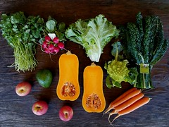 Suzie's CSA  box Week of Feb. 27 - Mar. 5