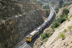 Sela (REGFA251013) Tags: psa citroen mercancias renfe adif 251 5100 sela tren train españa galicia
