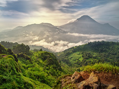 mount dieng (sandilesmana28) Tags: mount dieng cloud green fog landscape stone saariysqualitypictures