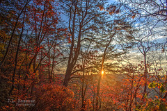 Sunrise from Martha's Pretty Point - Virgin Falls State Natural Area (J.L. Ramsaur Photography) Tags: jlrphotography nikond7200 nikon d7200 photography photo middletennessee whitecounty tennessee 2016 engineerswithcameras cumberlandplateau photographyforgod thesouth southernphotography screamofthephotographer ibeauty jlramsaurphotography photograph pic tennesseephotographer whitecountytennessee marthasprettypoint virginfallsnaturalarea virginfalls virginfallsstatenaturalarea tennesseehdr hdr worldhdr hdraddicted bracketed photomatix hdrphotomatix hdrvillage hdrworlds hdrimaging hdrrighthererightnow sunrise sunset sun sunrays sunlight sunglow orange yellow blue fall autumn fallinthesouth tennesseefall fallcolors colorful red brown fallseason autumncolors autumninthesouth fallleaves tennesseeautumn leaves autumnleaves leaf fallintennessee autumnintennessee landscape southernlandscape nature outdoors god'sartwork nature'spaintbrush unlimitedphotos