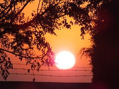 DSCF7562 (SiMo_Hr) Tags: silhouette silhouettes red yellow orange glow cloud clouds cloudy landscape scenery scenic sunset ocaso sonnenuntergang coucher de soleil pôr do sol tramonto закат zonsondergang zachód słońca solnedgång solnedgang auringonlasku apus залез matahari terbenam mặt trời lặn 日落 日没 evening sun light bay pigs bahía bahia cochinos schweinebucht gulf cazones baie des cochons baía dos porcos baia dei porci 豬玀灣 코치노스 만 кочинос playa larga cuba kuba 古巴キューバ 쿠바 куба क्यूबा كوبا eau lac ciel