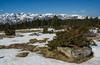 Plateau de Beille (JeanJoachim) Tags: pentaxk10d smcpentaxda21mmf32allimited