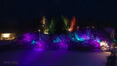 Karelia (nikolaeffvs) Tags: karelia winter snow night light ise cold colors