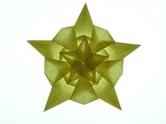 Estrella compleja pentagonal (Mélisande*) Tags: mélisande origami star pentagon tomokofuse