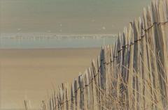 That nice kind of quiet (babs van beieren) Tags: fence ocean sea northsea belgium ostend sealife soft seagull quiet still stillness quietness shore shoreline beachscape fencedfriday 7dwf saturday landscape