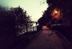 I walk alone... (HFF) (BillsExplorations) Tags: fence fencefriday park rockriver illinois hennepincanal martinslanding sinnissippipark alone dusk evening twilight walkway pathway hff
