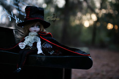 Day With In The Never More (dreamdust2022) Tags: ash adorable cute foolish sweet brave silly day dreamer undead vampire isul boy doll