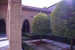 Aljafería (BorjaR.) Tags: d3300 nikon día day arquitectura architecture árbol tree zaragoza aljafería