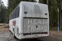 Anglų lietuvių žodynas. Žodis Belarusian reiškia baltarusių kalba,baltarusių,baltarusiškai,gudų lietuviškai.