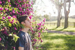 103/365 (Chris Gray Photo) Tags: light sunlight self selfportrait portrait portraiture fineart trees nature outdoors country flowers grow growth pink colour people bush outdoor sun canon 50mm 365project