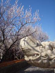 temple Yong'an, parc Beihai, Pékin (jffourmond) Tags: beihai beijing china chine pékin yongan