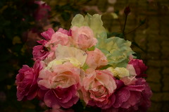 blessed be (meeeeeeeeeel) Tags: surreal abstract beautyofnature natureza nature nikon straightoutofcamera sooc unedited corderosa pink waterdrops rosas incameradoubleexposure digitaldoubleexposure doubleexposure roses flores flowers