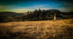 Evening in the Beacons (Rae de Galles) Tags: mountain farmhouse grass nature nationalpark gold evening sunset goldenhour fields breconbeacons brecon beacons