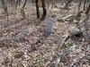 20170320_152026 (h.alfatli) Tags: bg 2017 mezar kabristan neofit bozveli bozvelievo alfatlı köyü momçilgrad