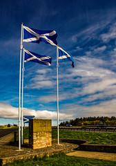 Scotlands Border (Brian Travelling) Tags: borders border scotland flag flagpole pentaxkr pentax pentaxdal