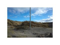 R0001668 (csinnbeck) Tags: husby klit denmark dk ricoh gr ricohgr 28mm 2017 april 6990 dune dunes pole vertical spring sand gray grey light