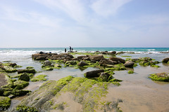 A Day at the Beach (mad artichoke) Tags: canon eos 5d mark iv 24mm nature outside oudoors spring april israel beach sea rocks blue sky wide water