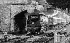 Bulleid Power (Ben_Broomfield) Tags: 34070 manston smoke steam swanagerailway swanage signal railway railwayline railwaybridge bullied pacific bw