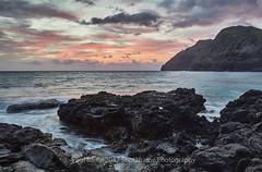 Makapu'u Beach - O'Hau - Hawaii - USA (paulbartle - Shot2frame Photography) Tags: makapuu ohau hawaii usa united states america sunrise beach windward shot2frame shot2framephotography