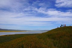 """Ocian in view! O! the joy,"" (nedlugr) Tags: california ca carrizoplain carrizoplainnationalmonument sodalake hills wildflowers sky clouds ocianinviewothejoy usa people"