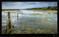 To The Sea, The Sea (joeturner1955) Tags: sevensisters saltflats cuckmere sussex coast