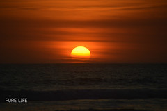 Sunset (Pure Life Surf) Tags: pure life surf co surfing swell water ocean photography sunset beach playa grande costa rica