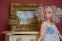 Portrait of a Portrait (Girl Least Likely To) Tags: momoko ccs closeclippedsheep todaysmomoko1501 willow curlyhair curls blonde diorama dollscene dollroom dollhouse miniatures asianfashiondolls japanesetoys dolls